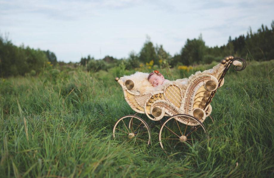 Outdoor newborn photos antique pram. Séance nouveau-né extérieure landau antique