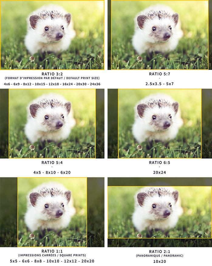 How to print your photos? Different aspect ratio. Which photo paper to choose. Comment imprimer ses photos? Quel format d'impression choisir? Quel papier photo choisir?