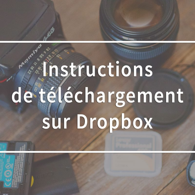 Instructions de téléchargement sur Dropbox. Sauvegarde de fichiers sur Dropbox. How to save your files from Dropbox.
