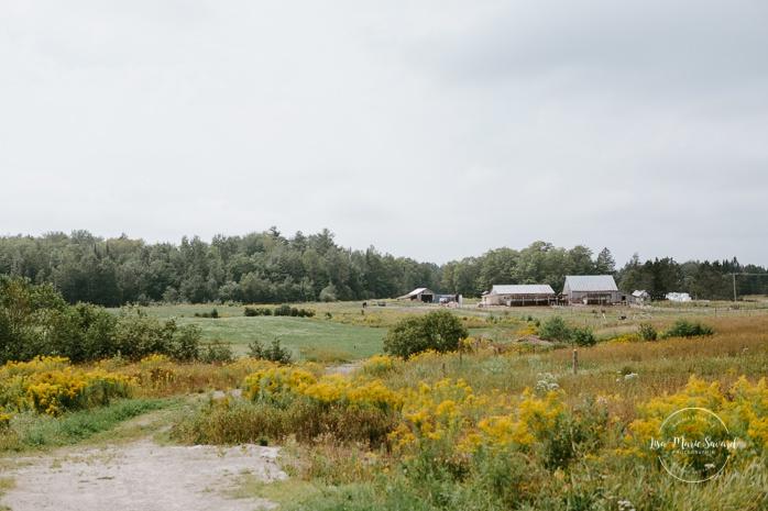 Country side wedding with horses. Auberge de l'Archipel à Saint-Paulin. Préparations des mariés à l'hôtel. Photographe de mariage à Trois-Rivières
