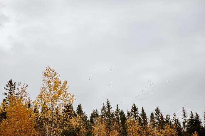 Fall mini session. Fall family photos. Photos d'automne à Jonquière. Photographe de famille au Saguenay.