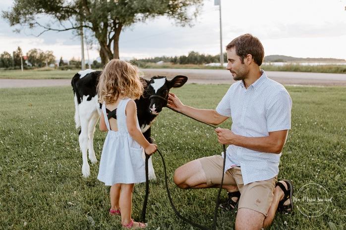 Little girl petting cow calf with dad. Dairy farm photos with cows. Farm photo session. Family photos with cows. Countryside family photos. Photos de famille à la campagne. Photos de famille dans un champ. Photographe de famille à Montréal. Montreal family photographer.