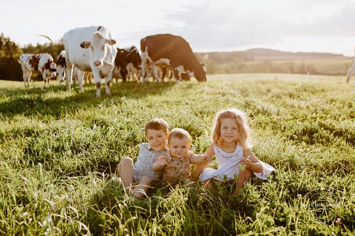Children sitting on grass with cows. Dairy farm photos with cows. Farm photo session. Family photos with cows. Countryside family photos. Photos de famille à la campagne. Photos de famille dans un champ. Photographe de famille à Montréal. Montreal family photographer.