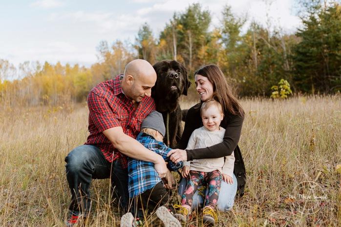 Fall family photos. Autumn family session. Family photos with dog. Children with big dog. Minis séances d'automne au Saguenay. Photos de famille à Jonquière. Saguenay family photographer.
