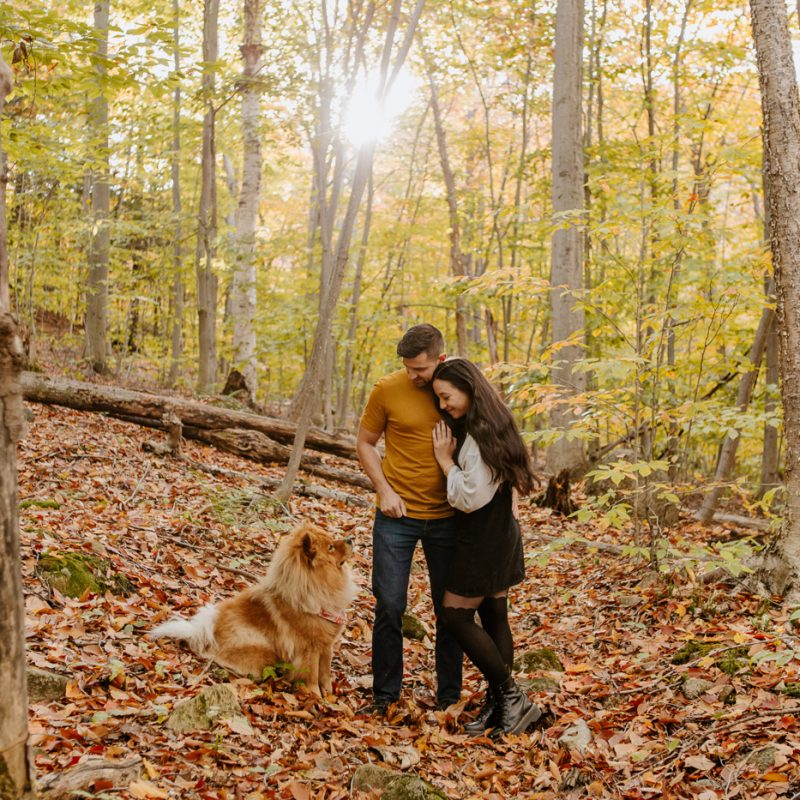 Fall engagement photos. Engagement session with dog Chow-Chow. Fall romantic photos. Forest engagement session. Séance de couple dans les Laurentides en automne. Photographe Laurentides. Laurentians fall engagement session.