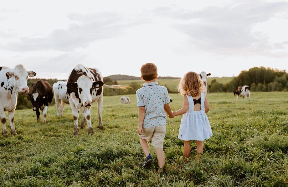 Le meilleur de 2020 – Photographe de famille à Montréal