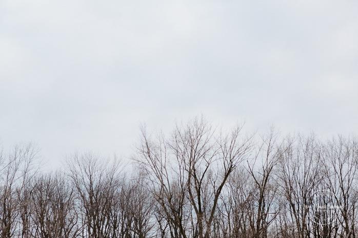 Minis séances des Fêtes 2020. Photographe de famille à Montréal. Photographe d'enfants à Montréal. Photographe de maternité à Montréal. Montreal family photographer. Montreal children photographer. Montreal maternity photographer.