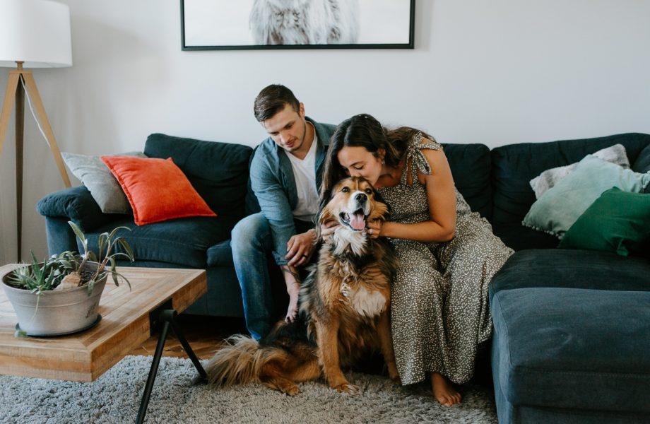 Stephanie & Daniar – Photos de maternité avec chien